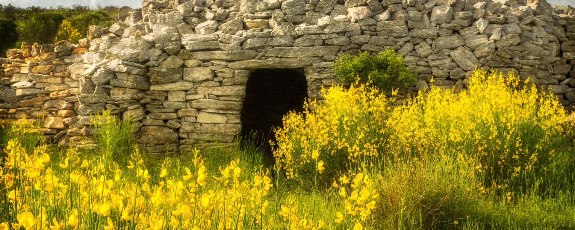 Capitelle pierre sèche Pays d'Art et d'Histoire Haut Languedoc et Vignobles