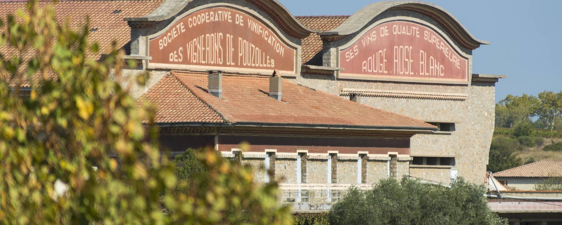 Cave coopérative Pays d'Art et d'Histoire Haut Languedoc et Vignobles