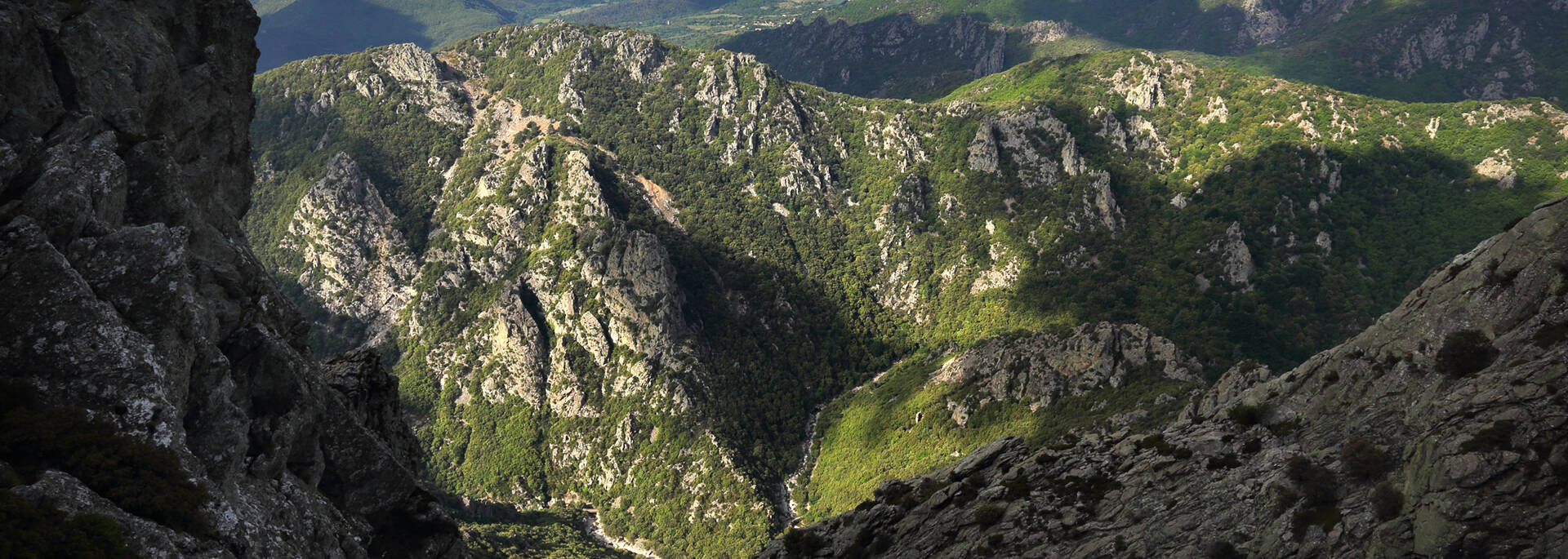 Dramatic limestone gorges in the Haut Languedoc et Vignobles