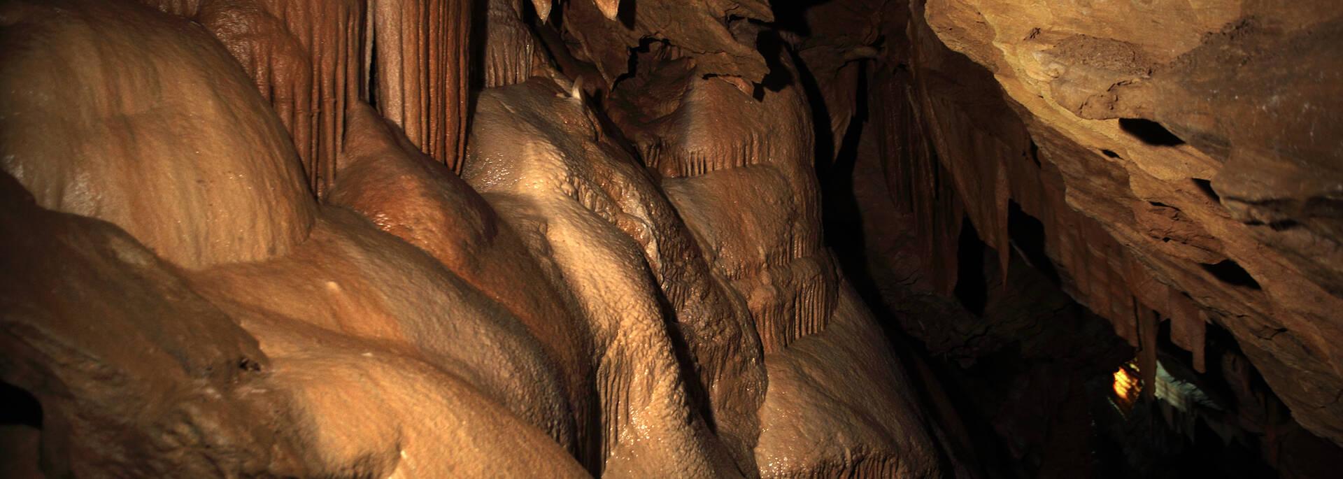 Cave in the Pays d'Art et d'Histoire, Haut Languedoc et Vignobles