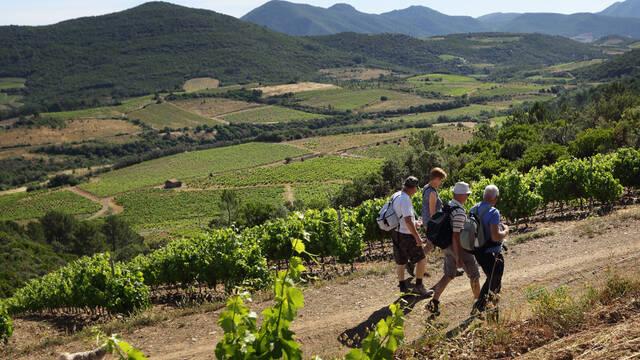 """Oenorando"" wine tours"