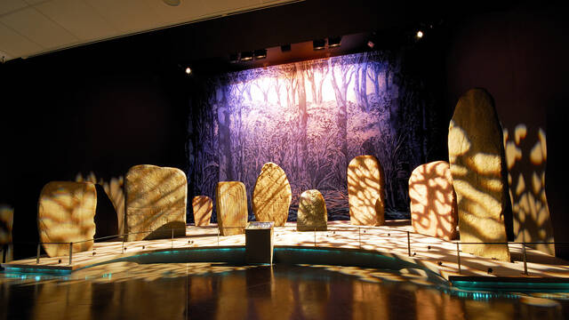 Regional museum of prehistory