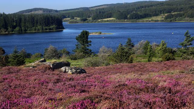 Mountain lake in the Pays d'Art et d'Histoire, Haut Languedoc et Vignobles