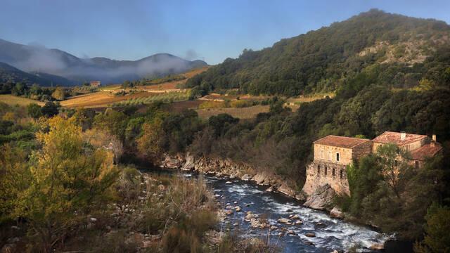 """Water mill in the """"Pays d'Art et d'Histoire"""" of the Haut Languedoc et Vignobles"""