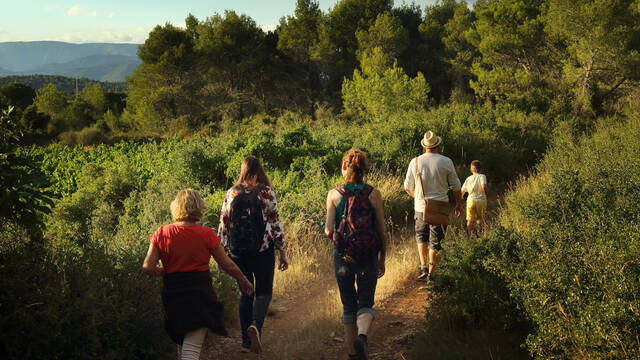 hikers on a pathway across the garrigue