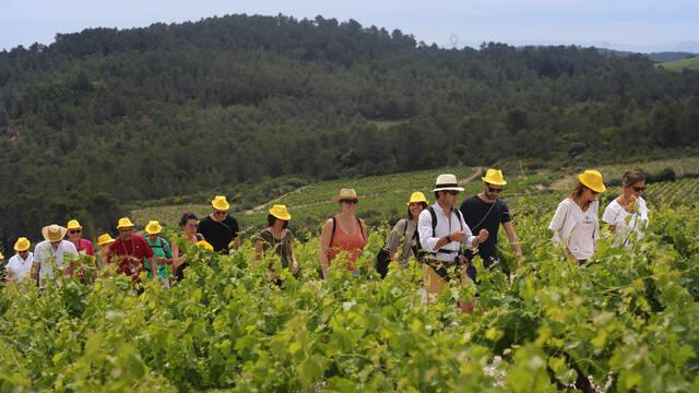 groupe dans le cadre d'une balade vigneronne ©Georges Souche