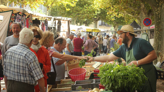 The lively market at Saint-Chinian ©G.Souche