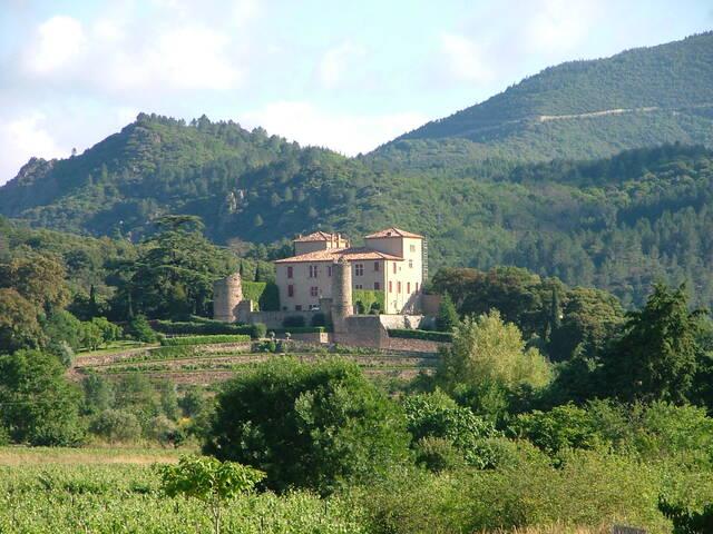 IGP vineyards of the Haute Vallée de l'Orb ©R.Troisi