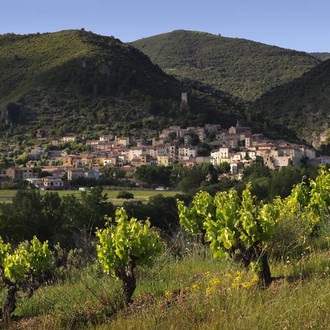 le village de Roquebrun @G. Souche