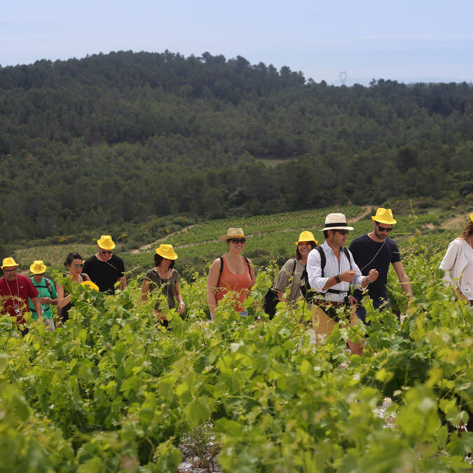 A walk with a winemaker ©G.Souche